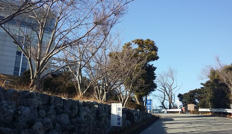 蔵王山展望台行き方