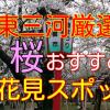 【東三河】桜おすすめ花見スポットを厳選 豊橋市・豊川市・新城市
