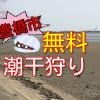 豊橋市の潮干狩りおすすめ無料スポット!豊川河口