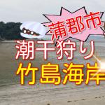 蒲郡市の潮干狩り2017・竹島海岸おすすめ!