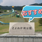 【蒲郡市】とよおか湖公園おすすめ!夜景と桜花見スポット