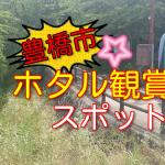 豊橋市でホタルが見れるスポットまとめ!内山川・朝倉川・神田川の場所と見頃