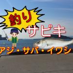 豊橋市から近い田原港はサビキ釣りでアジ・サバ・イワシが狙える!