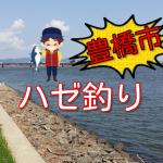 豊橋市の魚釣りポイント場所情報!初心者でもハゼ釣りなら簡単!豊川でうなぎ狙いも