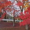 岐阜県の穴場的な紅葉スポット!ライトアップもあり!奥矢作湖・串原郷土館
