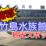 竹島水族館のリニューアル後の様子!大人気の蒲郡観光スポット!