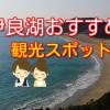 伊良湖観光スポットを紹介!菜の花まつりのついでにおすすめ!【渥美半島】