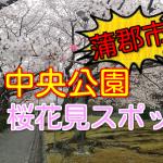 蒲郡市の桜花見スポット!2018中央公園の見頃と開花状況!