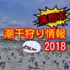 蒲郡市潮干狩り情報2018!三谷・水神・竹島・形原・西浦・松島