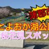 蒲郡市の桜花見スポット!とよおか湖公園は穴場的な花見スポットでファミリーにおすすめ!